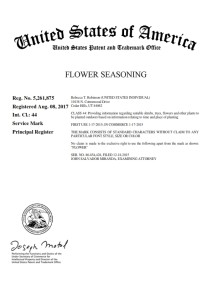 Utah_Trademark_Attorney_5261875